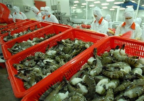 Làm rõ thông tin một doanh nghiệp thủy sản Việt bị cáo buộc lẩn tránh thuế tại Hoa Kỳ
