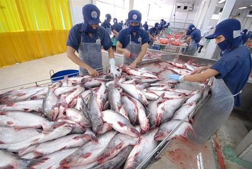 Sản lượng thủy sản nuôi trồng quý 1/2019 ước tính đạt 646,2 nghìn tấn