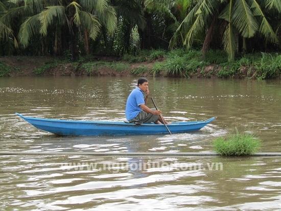Chuyện con cá bông lau trên đất Cù Lao Dung